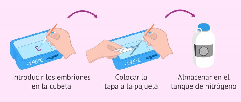 Uso de embriones congelados