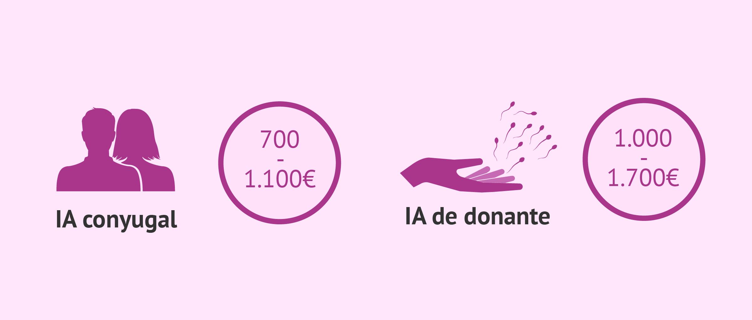 Coste de la inseminación artificial en España