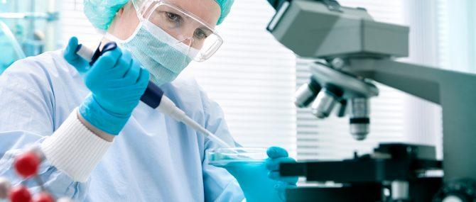 Gametos y células madre