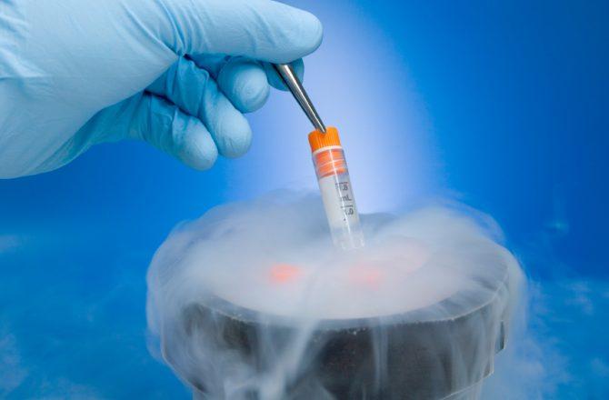Congelar gametos ante el cáncer
