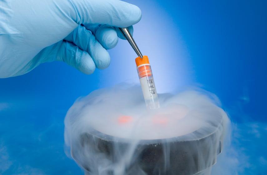 Preservar la fertilidad