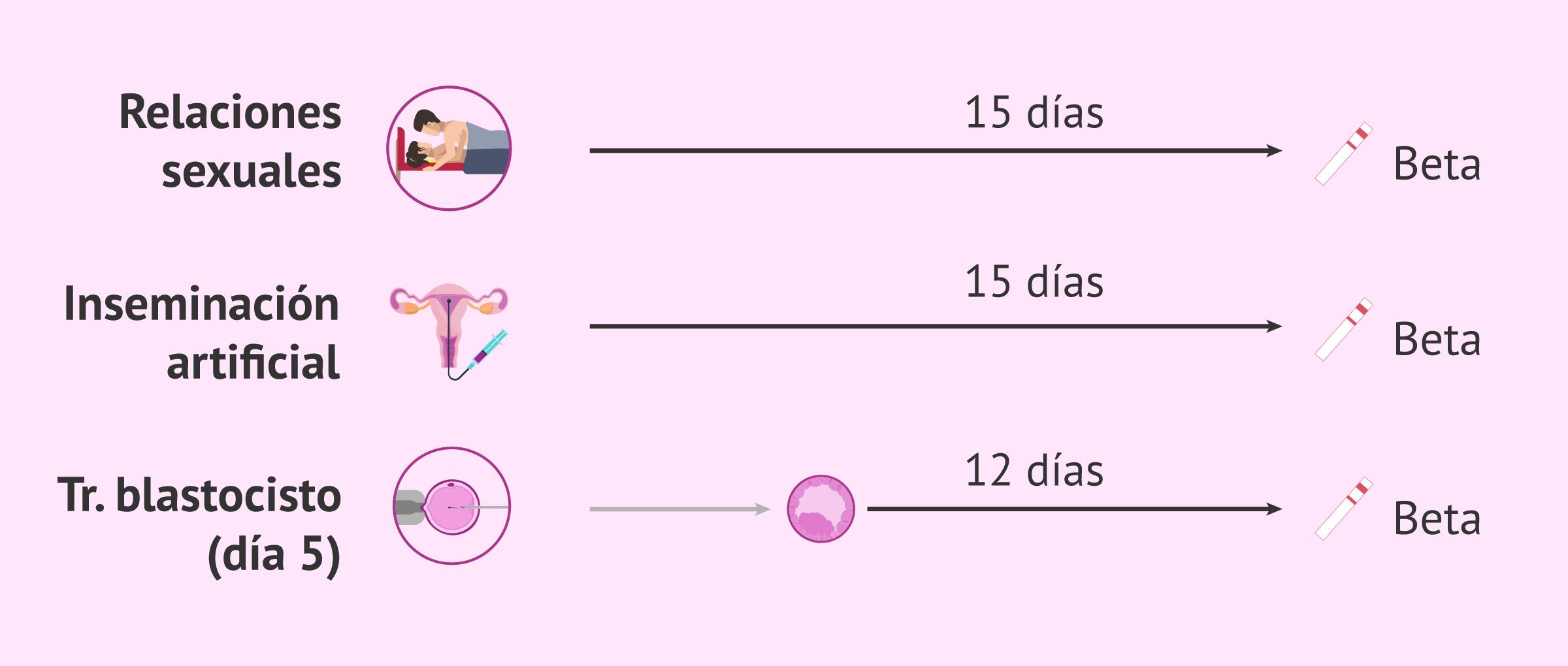 ¿Cuándo hacer un test de embarazo?