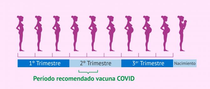Imagen: Recomendación sobre cuándo vacunar frente a COVID-19 a una embarazada