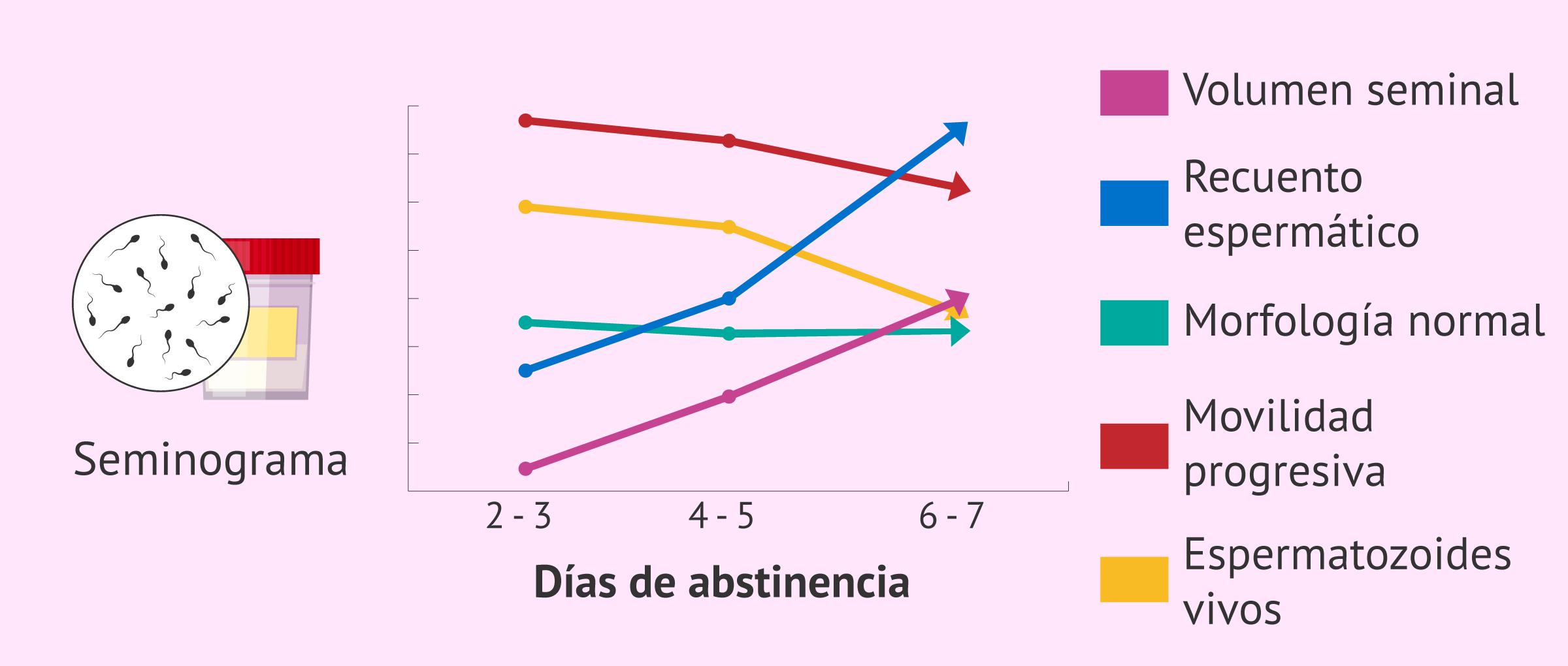 ¿Cómo afectan los días de abstinencia a la calidad seminal?