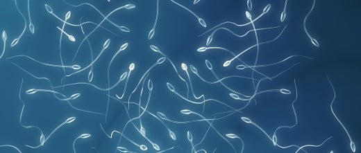 Esperma de donante