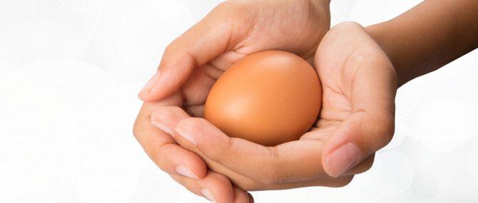 La donación de óvulos permite posponer la maternidad
