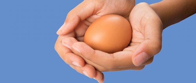 Donantes de óvulos en Reino Unido