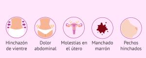 Después de la inseminación