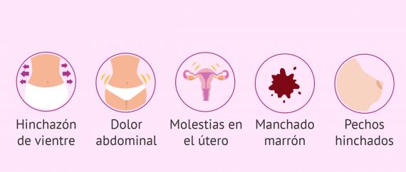 Imagen: Después de la inseminación