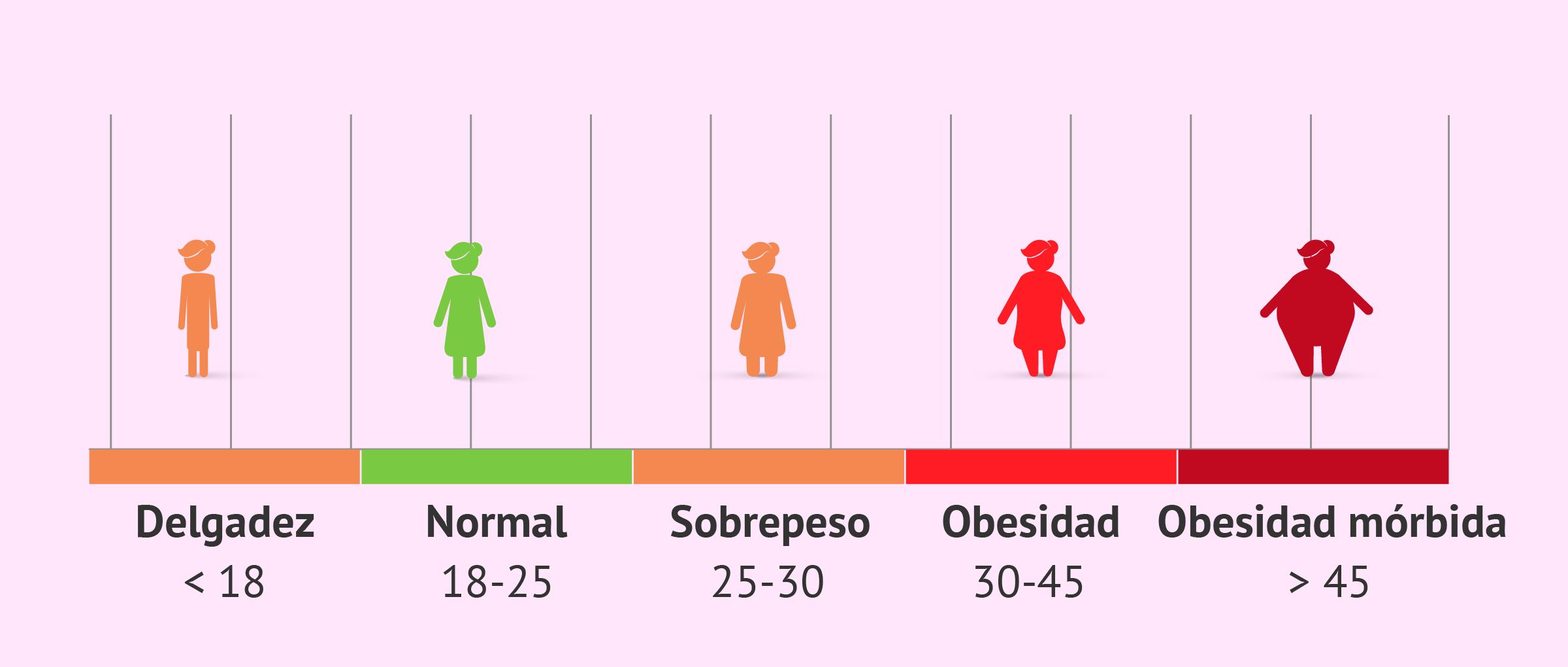 Relación del IMC y la fertilidad