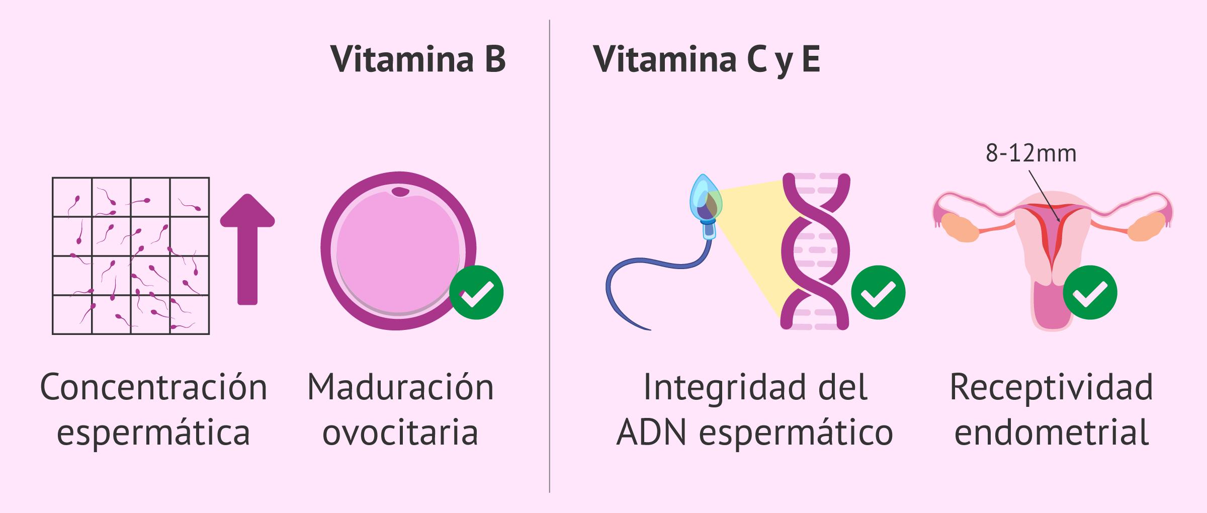 Efectos de las vitaminas en la calidad del semen