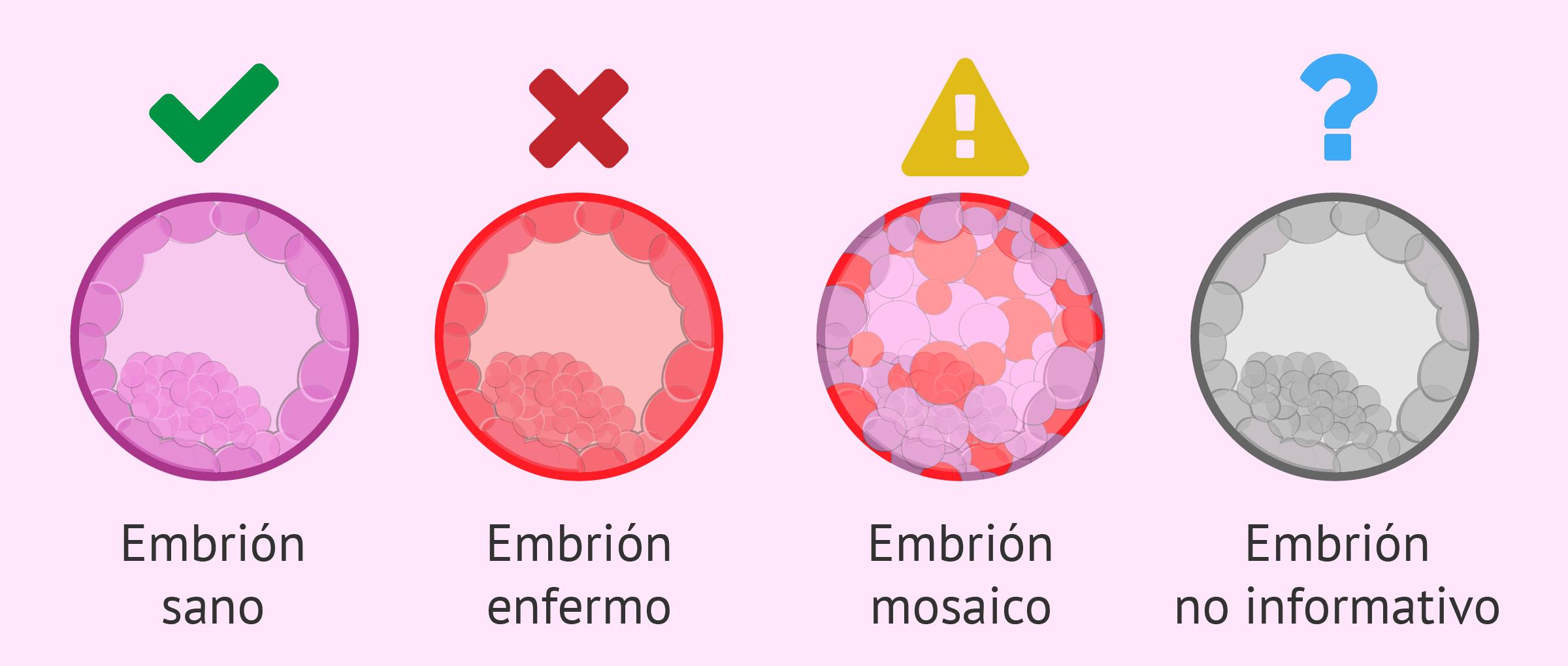 Embarazo tras el análisis genético de embriones
