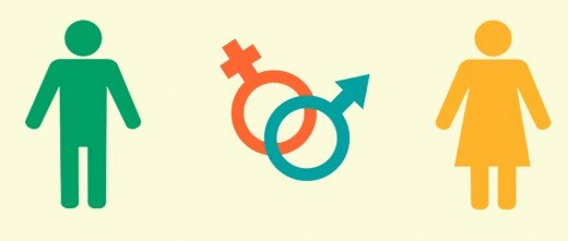 Embriones femeninos y masculinos
