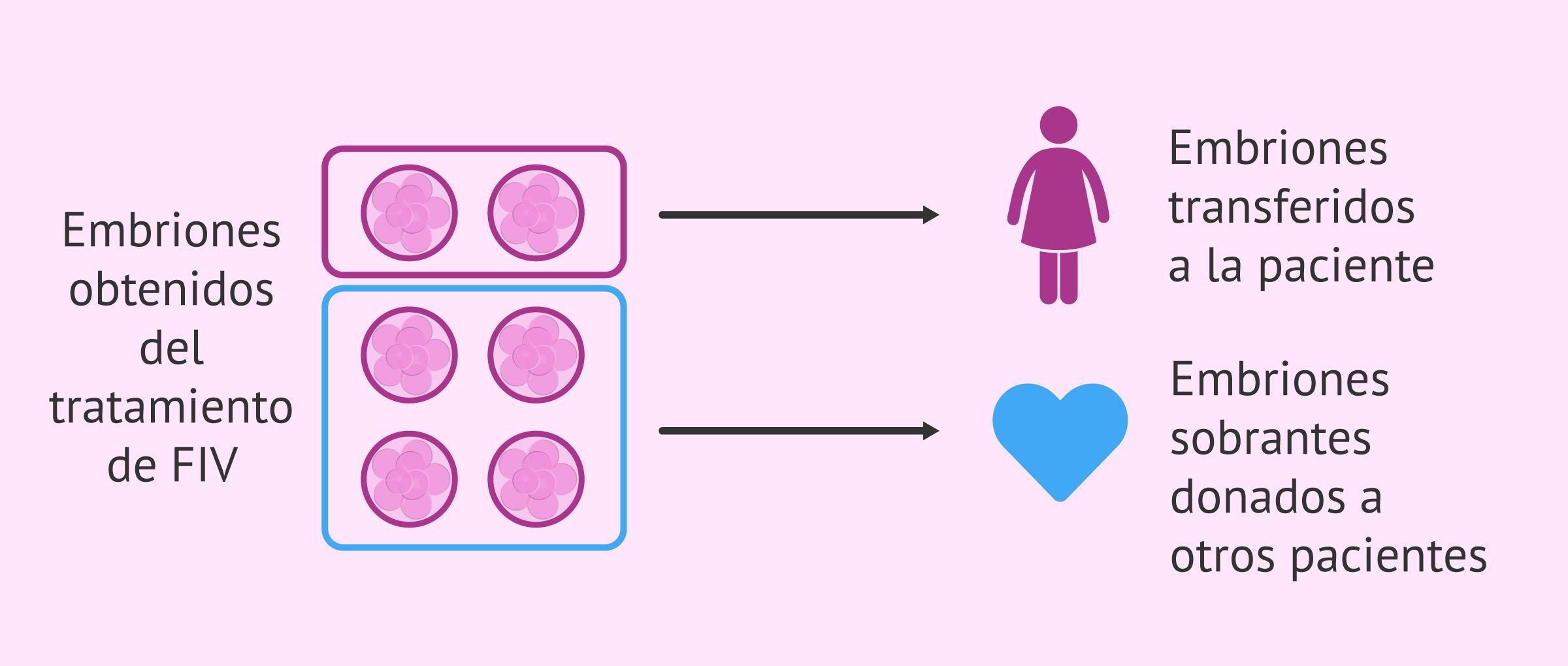 Embriones sobrantes de la FIV donados
