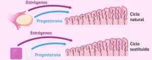 Varias estrategias para preparar el endometrio