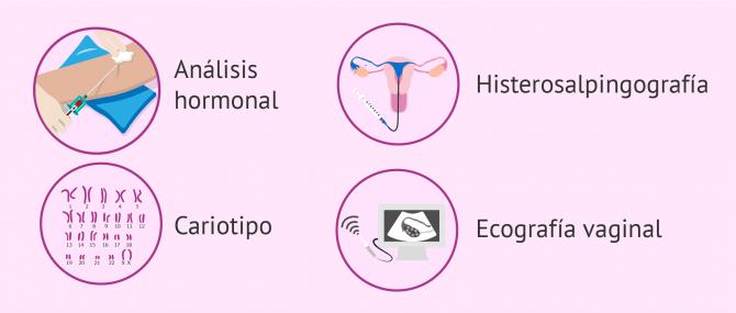 Pruebas de fertilidad en la mujer – ¿Cuáles son y en qué consisten?