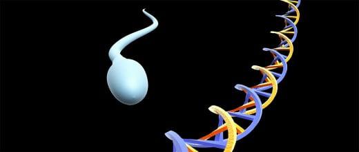 Etiquetas epigenéticas en los espermatozoides