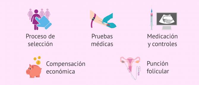 Imagen: ¿Por qué aumenta el precio de la FIV con óvulos de donante?