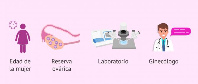 Imagen: factores-exito-tratamiento