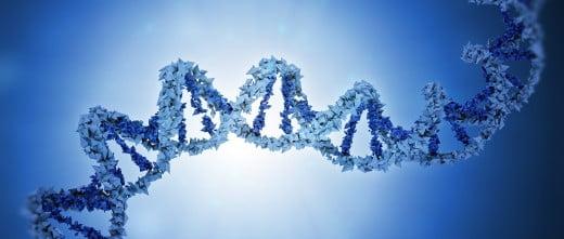 Alteraciones genéticas