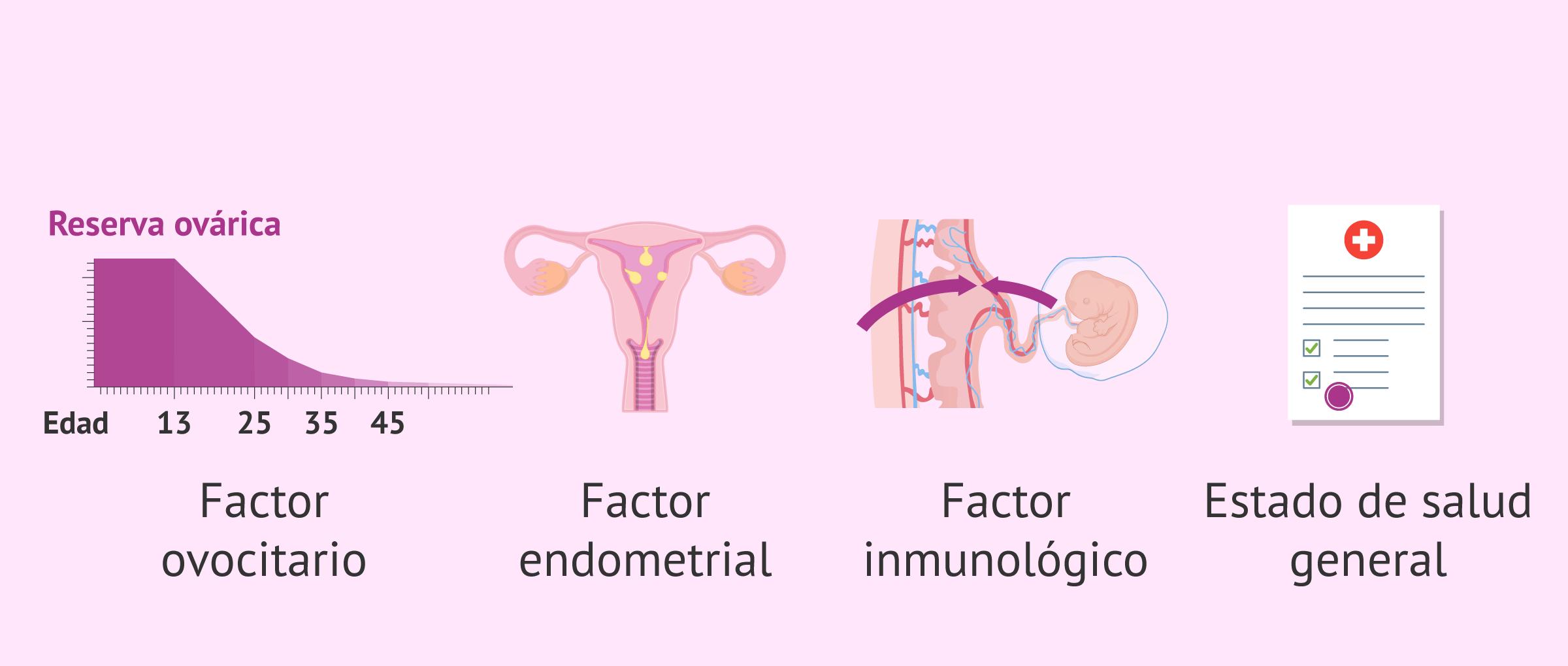 factores-relacionado-con-edad-y-fertilidad