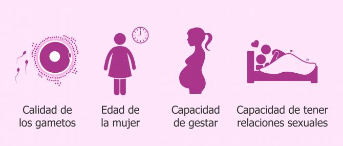 ¿Qué significa 'ser fértil' y qué factores influyen en la fertilidad?