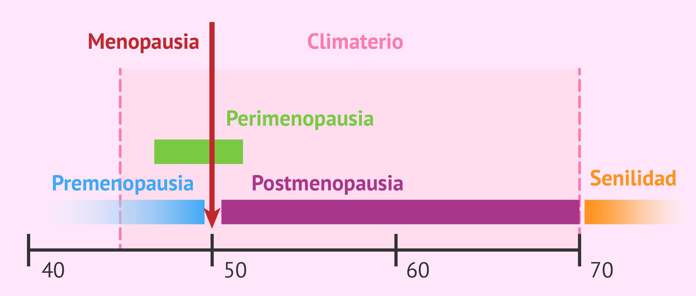 Fases del climaterio en la mujer