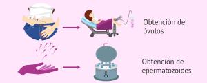 Fecundación in vitro con donación de semen