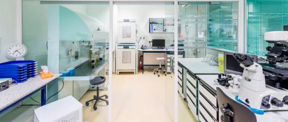 FIV Recoletos laboratorio