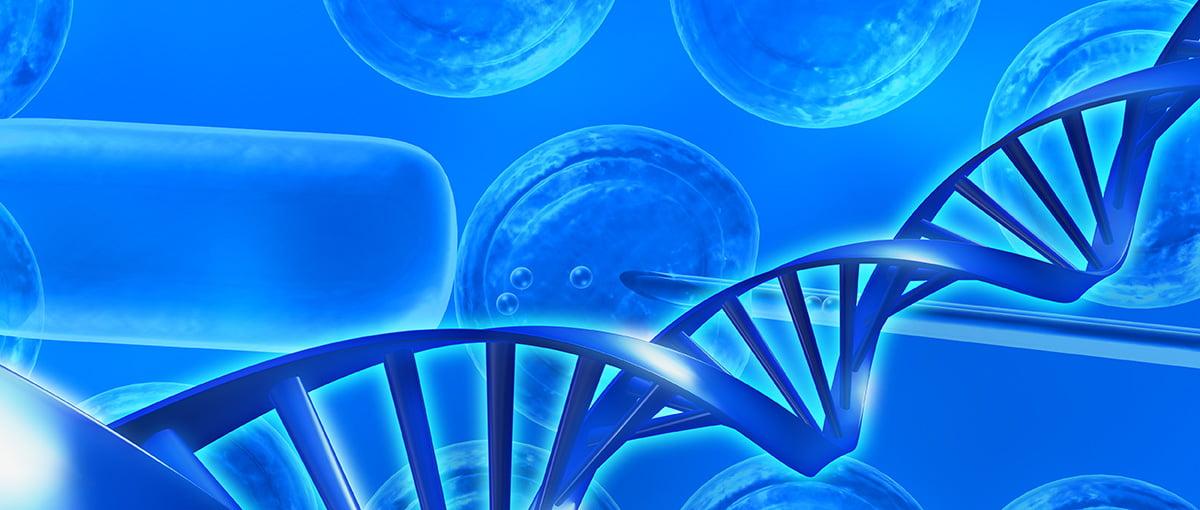 Selección embrionaria pareja con traslocación