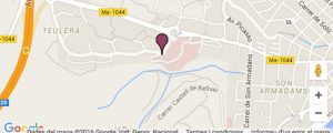 Hospital Universitario Son Dureta mapa