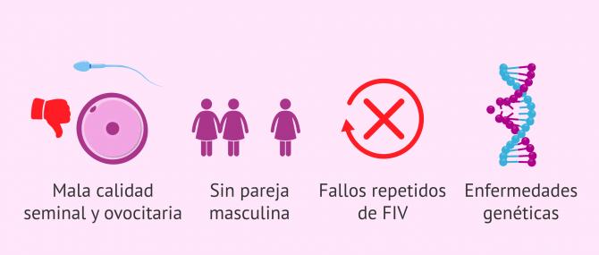 Imagen: Casos indicados para la adopción de embriones