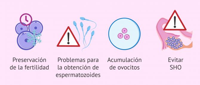 Imagen: ¿Cuándo se recomienda FIV con óvulos congelados?