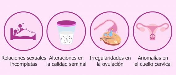 Imagen: Indicaciones de la inseminación artificial conyugal