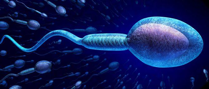Imagen: Infertilidad masculina y diabetes
