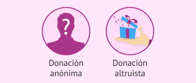 Imagen: Características de la donación en España