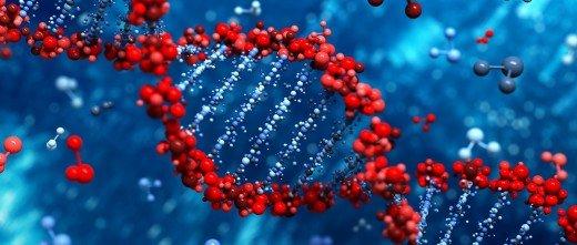 Se desarrolla una nueva técnica no invasiva para identificar defectos genéticos en los embriones