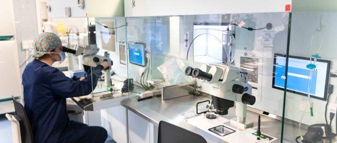 Imagen: Laboratorio de FIV de la clínica Tambre