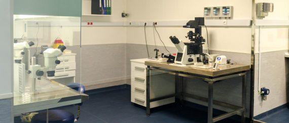 laboratorio-de-fiv