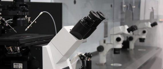 Laboratorio fecundación in vitro Fertility Madrid