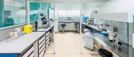 Laboratorio fecundacion in vitro FIV Recoletos