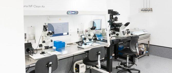 Imagen: Microinyección espermática intracitoplasmática