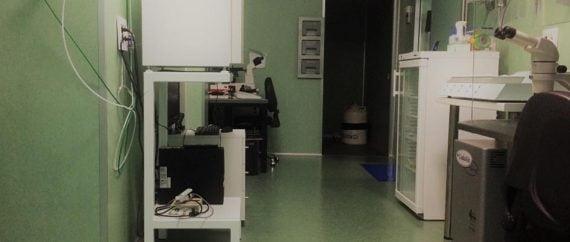 Laboratorio de FIV de la clínica de Fertilidad Velázquez