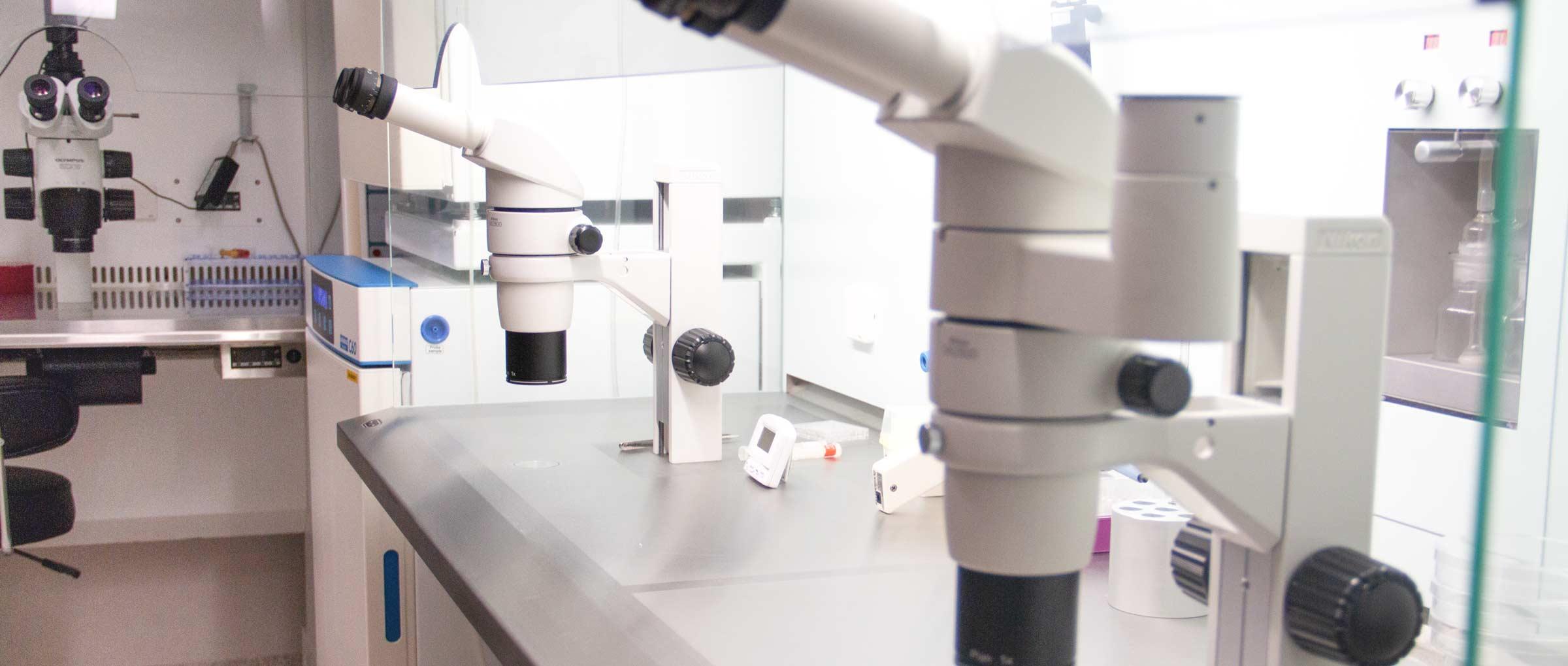 Laboratorio de FIVIR