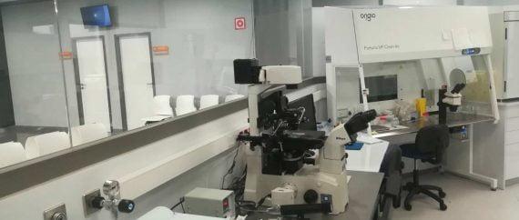 LaboratorioCristal ginemed huelva