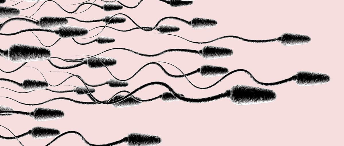 Aumentar el esperma