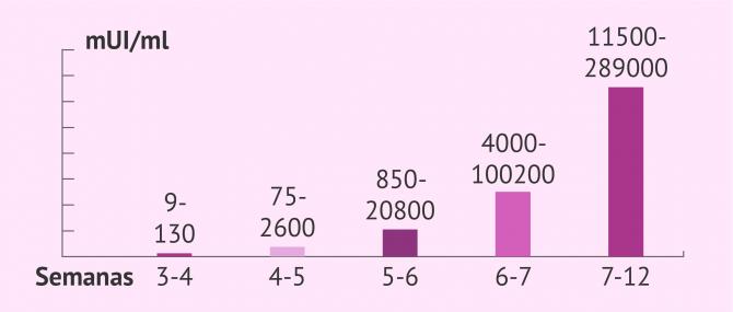 Los niveles de la hormona beta-hCG y las semanas de embarazo