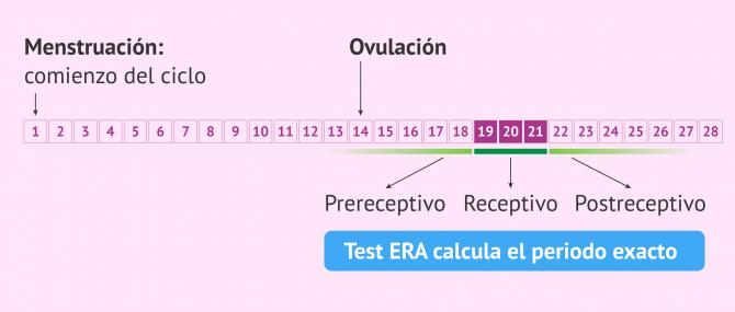 Imagen: Objetivo del test ERA