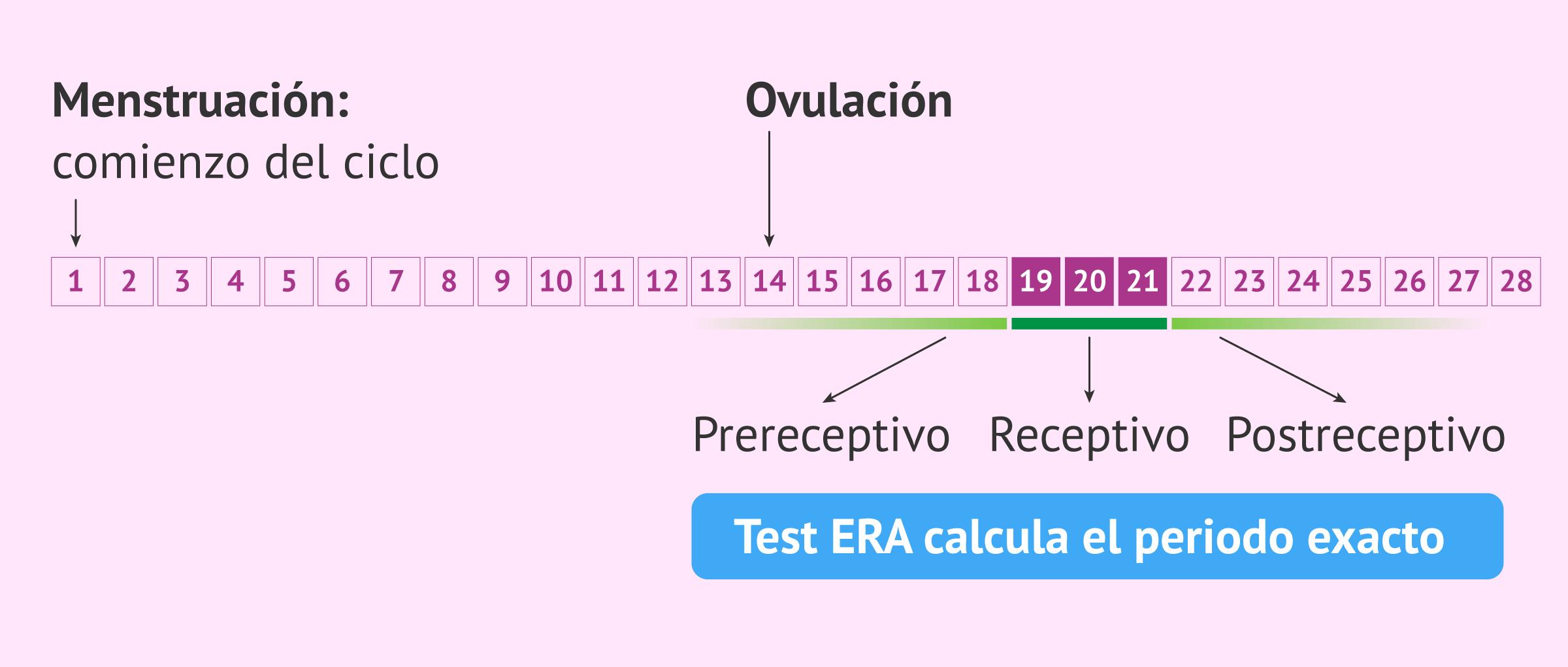 Objetivo del test ERA