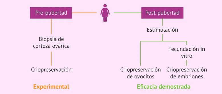 Imagen: Opciones de preservación de la fertilidad en pacientes oncológicas